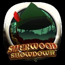 Sherwood Showdown - slots
