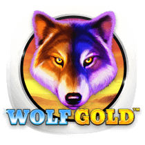 Wolf Gold - slots